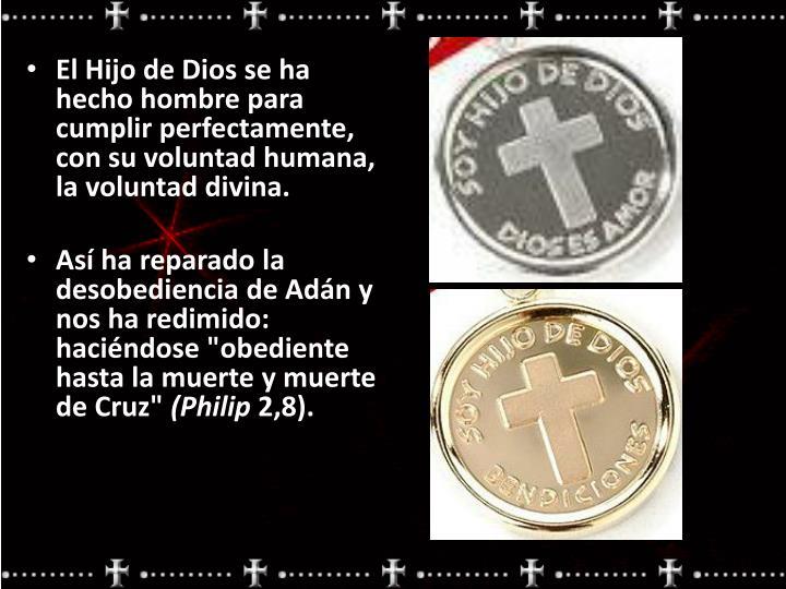 El Hijo de Dios se ha hecho hombre para cumplir perfectamente, con su voluntad humana, la voluntad divina.