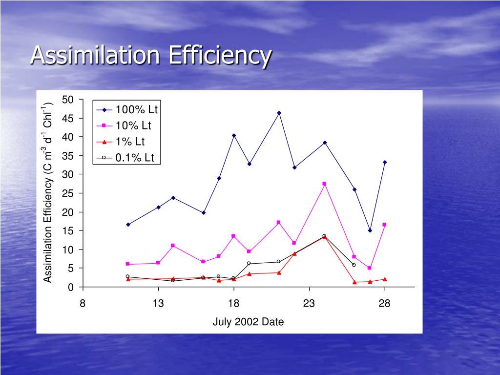 Assimilation Efficiency