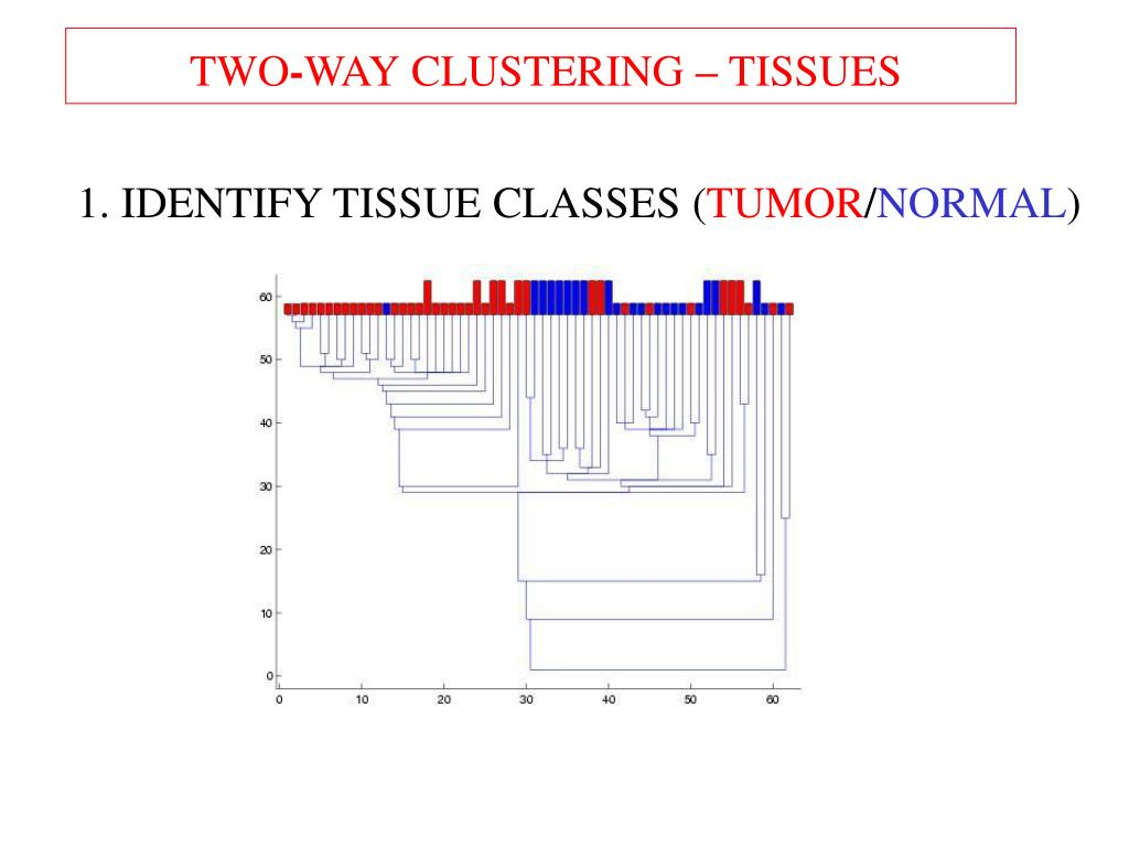 2-way clustering - tissues