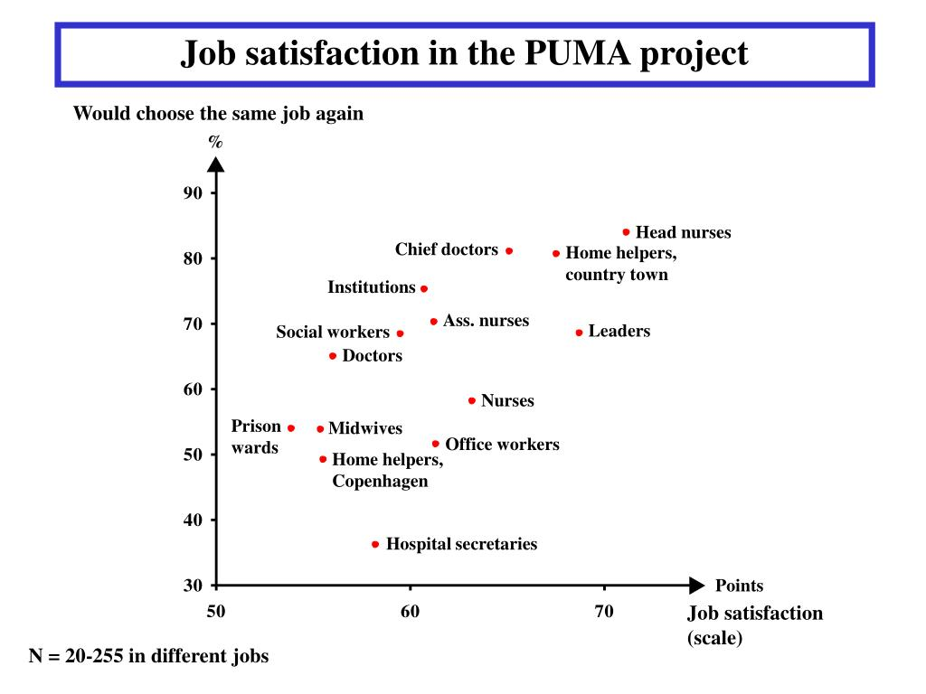 Job satisfaction in the PUMA project