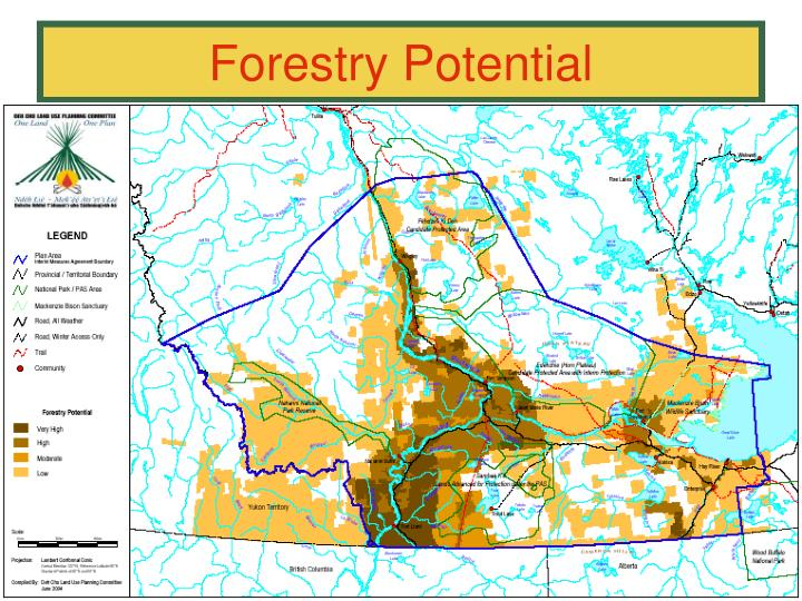 Forestry Potential