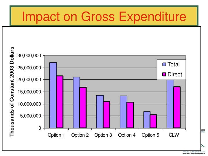 Impact on Gross Expenditure
