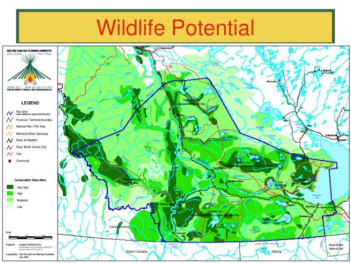 Wildlife Potential