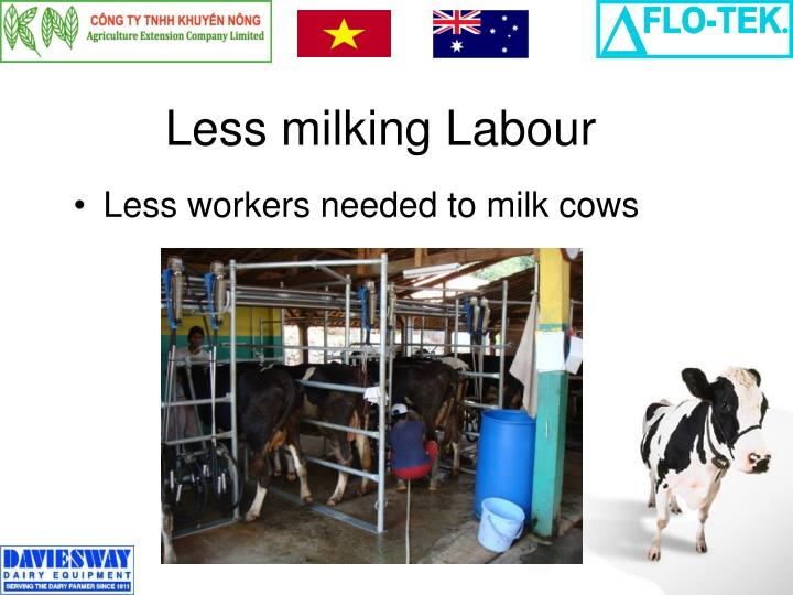 Less milking Labour