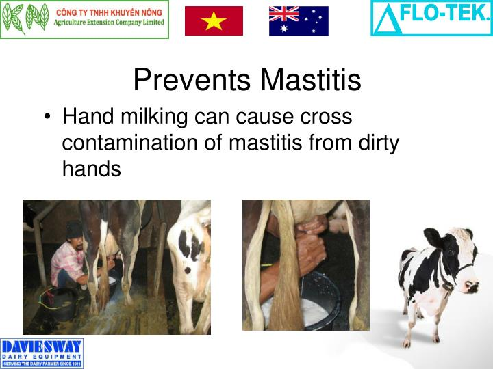 Prevents Mastitis