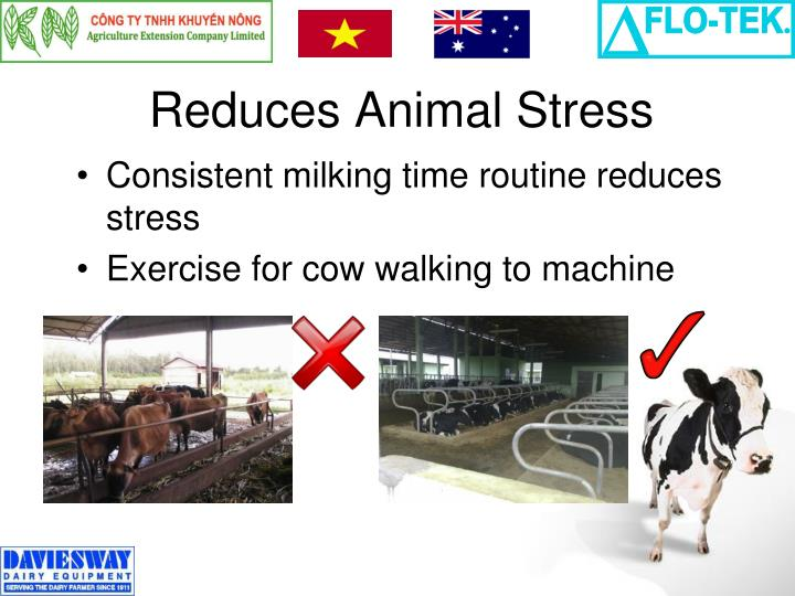 Reduces Animal Stress