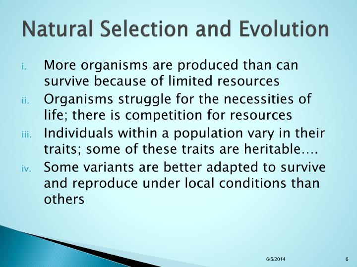 natural selection evolution mutation variation heritability