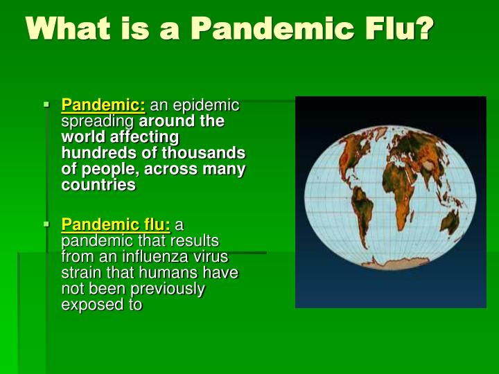What is a Pandemic Flu?