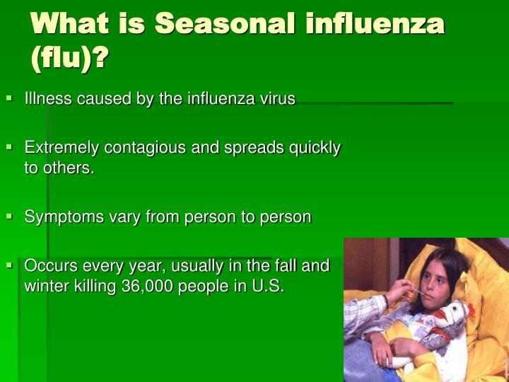 What is Seasonal influenza (flu)?