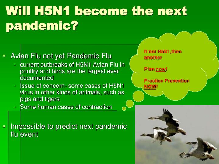 Will H5N1 become the next pandemic?