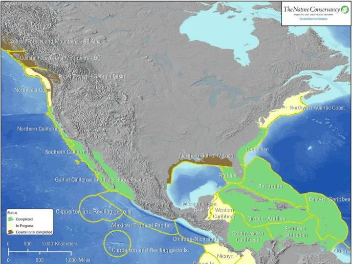 Northwest Atlantic Marine ecoregion