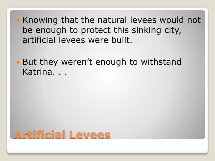 Knowing that the natural levees would not be enough to protect this sinking city, artificial levees were built.