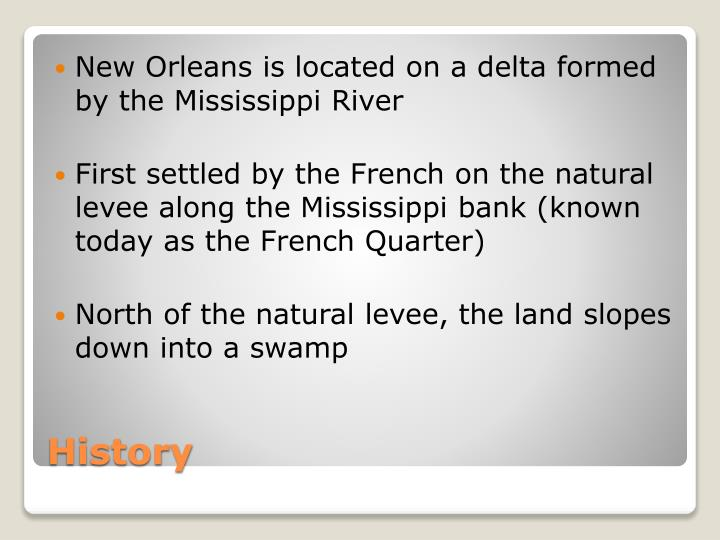 New Orleans is located on a delta formed by the Mississippi River