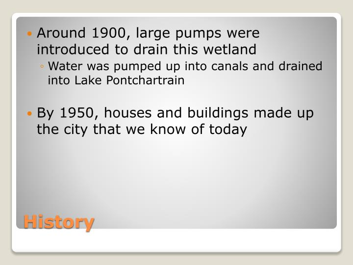 Around 1900, large pumps were introduced to drain this wetland
