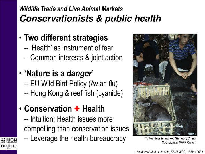 Live Animal Markets in Asia, IUCN-WCC, 15 Nov 2004