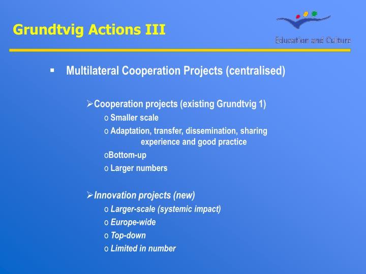 Grundtvig Actions III