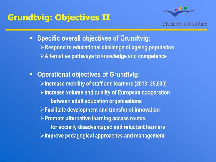 Grundtvig: Objectives II