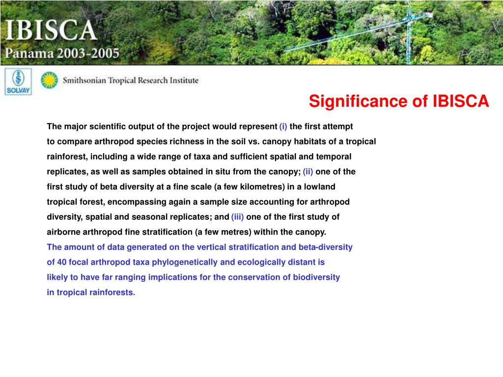 Significance of IBISCA