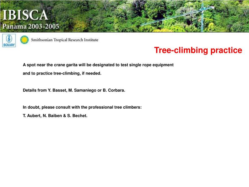 Tree-climbing practice