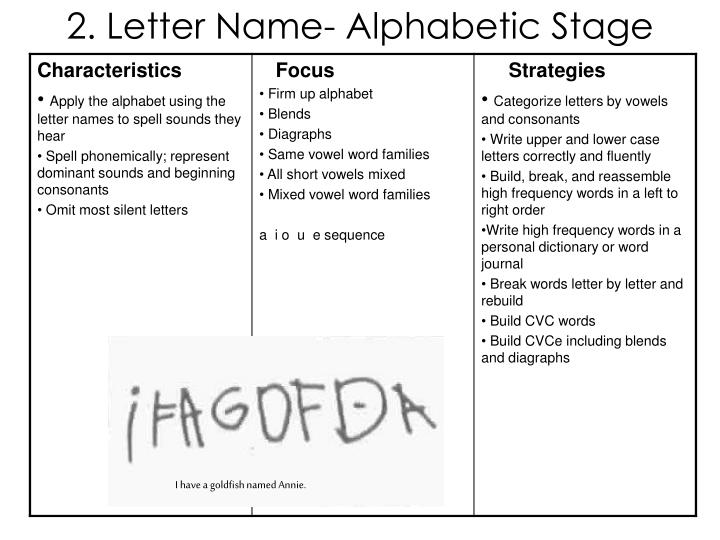 2. Letter Name- Alphabetic Stage