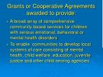grants or cooperative agreements awarded to provide