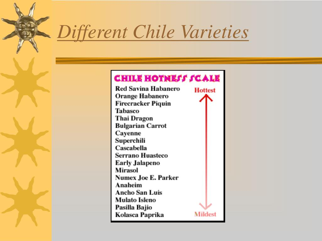 Different Chile Varieties