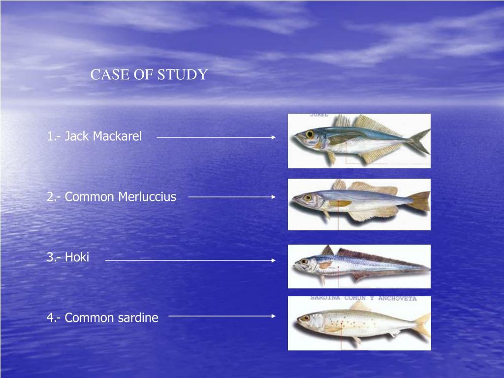 CASE OF STUDY
