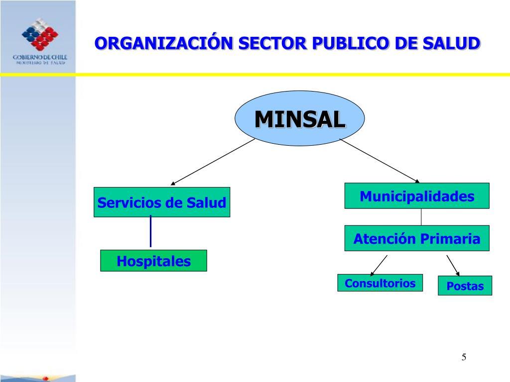 ORGANIZACIÓN SECTOR PUBLICO DE SALUD