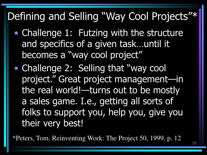 "Defining and Selling ""Way Cool Projects""*"