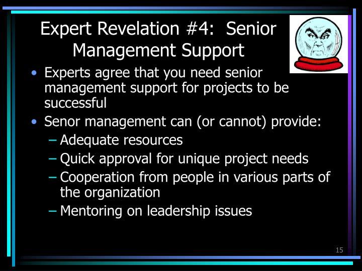 Expert Revelation #4:  Senior Management Support