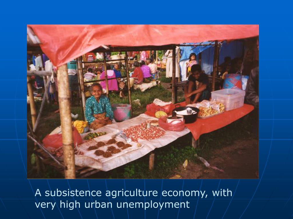 A subsistence agriculture economy, with