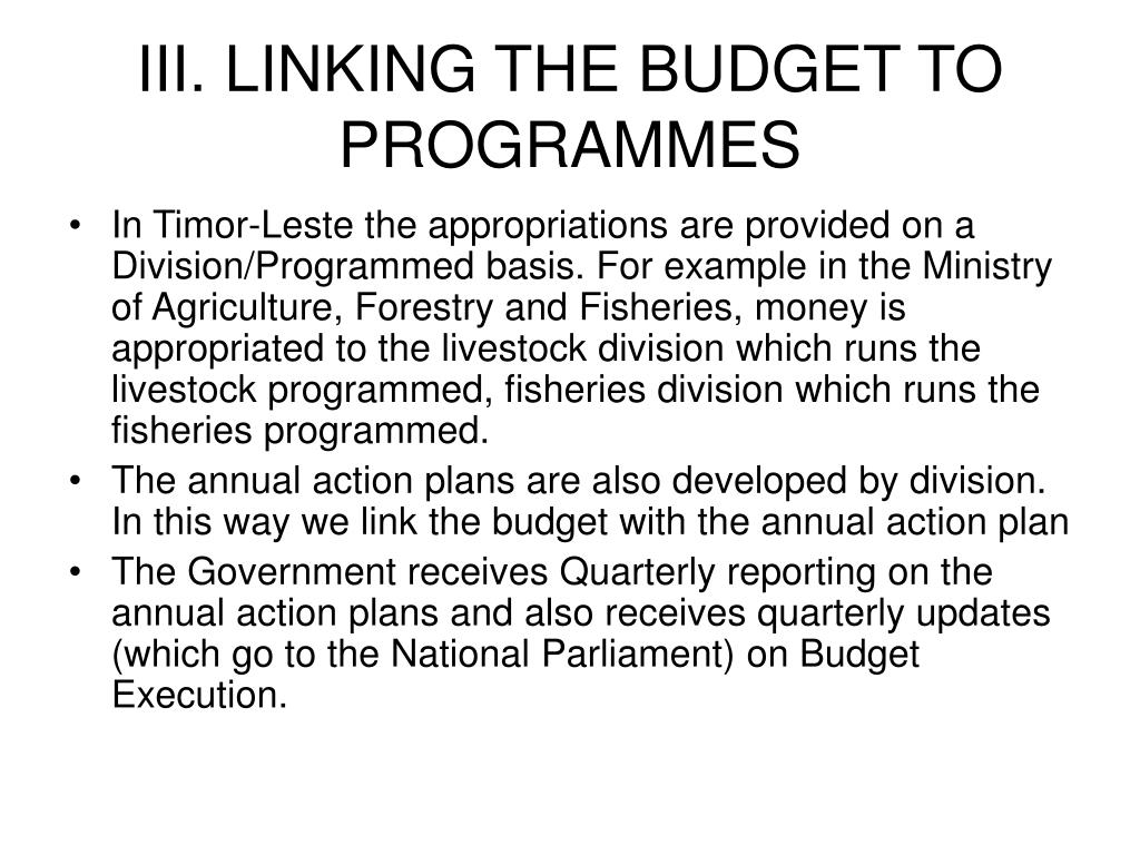 III. LINKING THE BUDGET TO PROGRAMMES