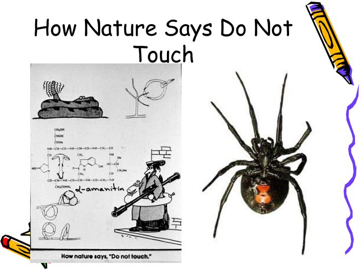 How Nature Says Do Not Touch