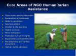 core areas of ngo humanitarian assistance