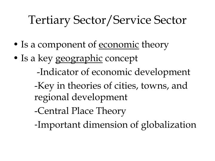 Tertiary Sector/Service Sector