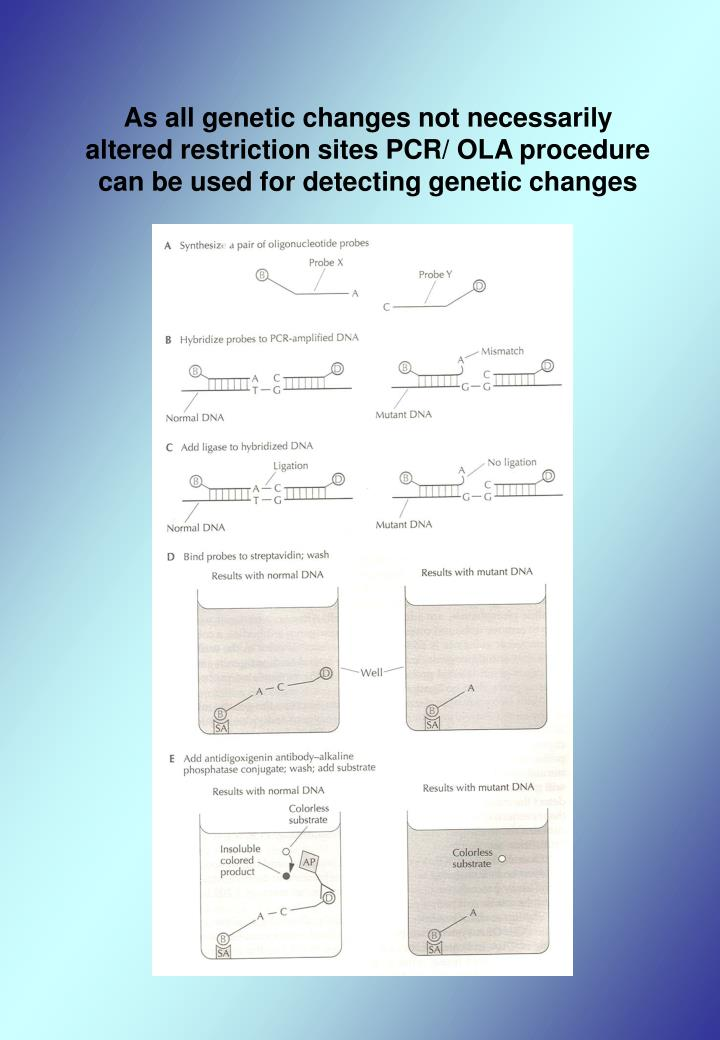 As all genetic changes not necessarily altered restriction sites PCR/ OLA procedure can be used for detecting genetic changes