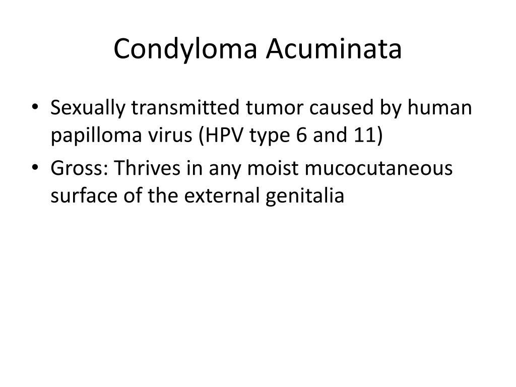 Condyloma