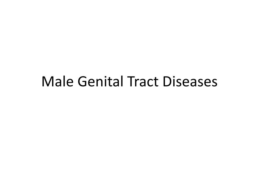 Male Genital Tract Diseases