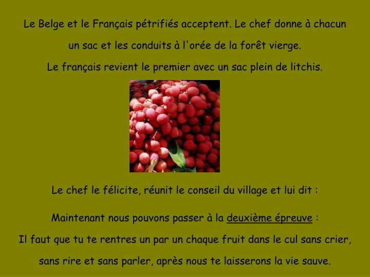 Le Belge et le Français pétrifiés acceptent. Le chef donne à chacun un sac et les conduits à l'orée de la forêt vierge.