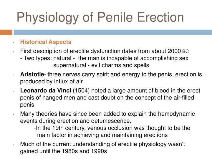 Physiology of penile erection