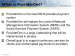 what is providerone