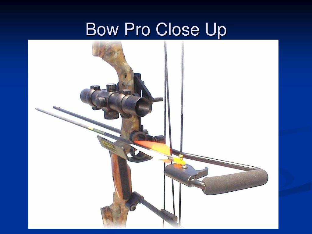 Bow Pro Close Up
