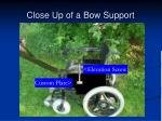 close up of a bow support