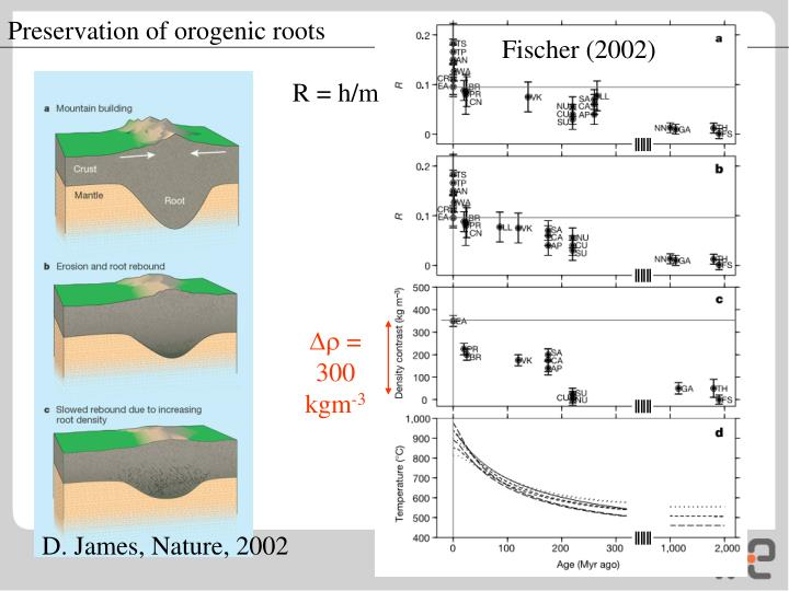 Preservation of orogenic roots