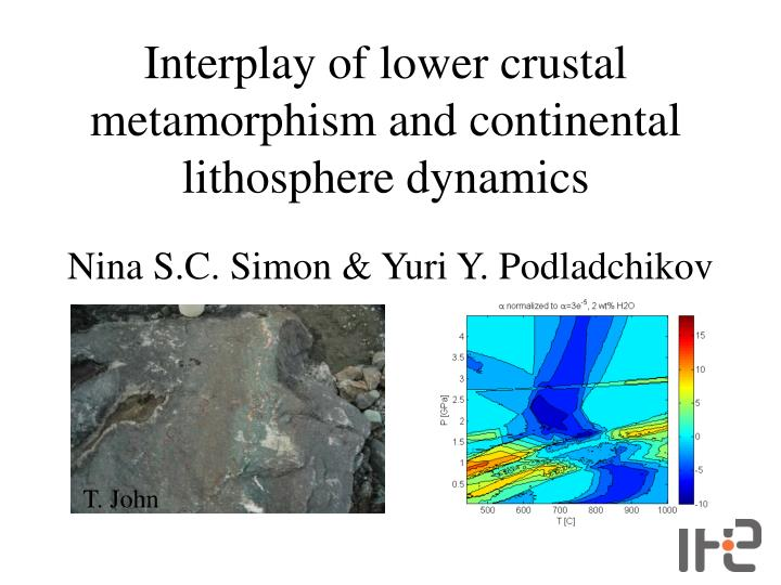 Interplay of lower crustal metamorphism and continental lithosphere dynamics