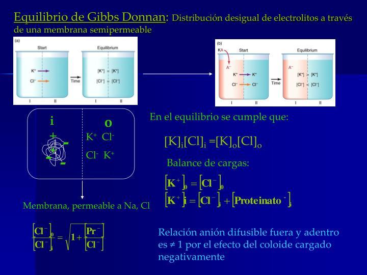 Equilibrio de Gibbs Donnan