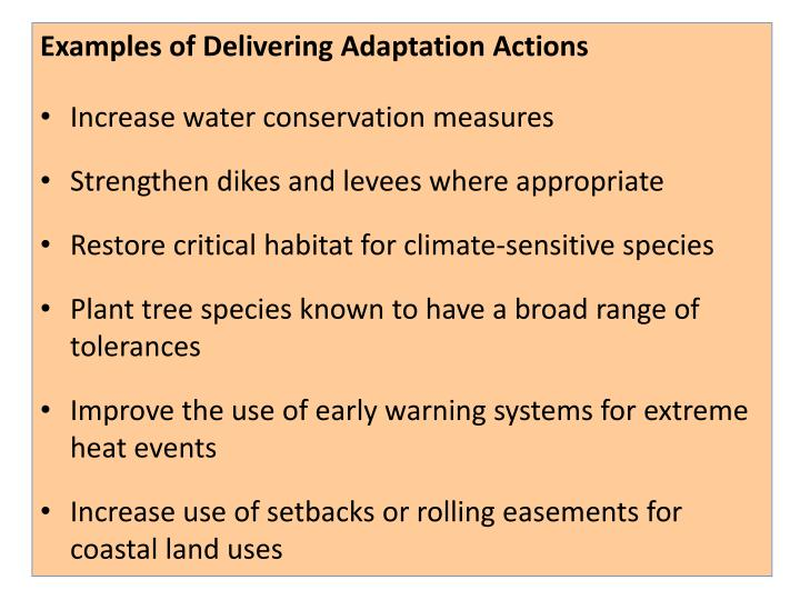 Examples of Delivering Adaptation Actions