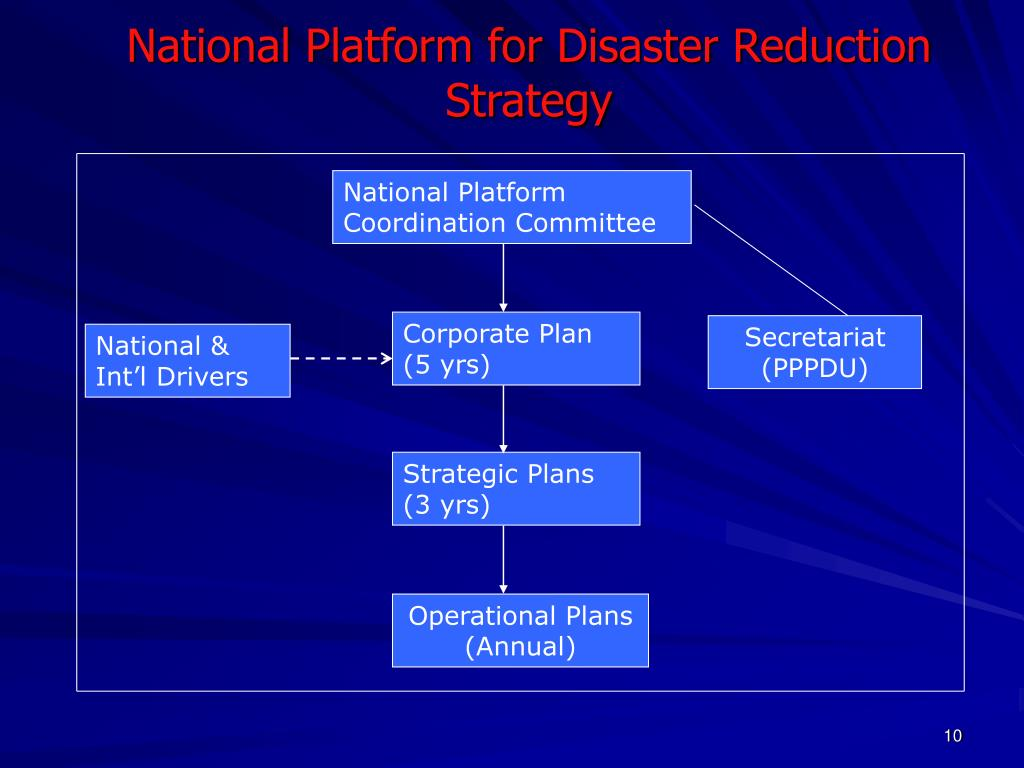 National Platform for Disaster Reduction Strategy