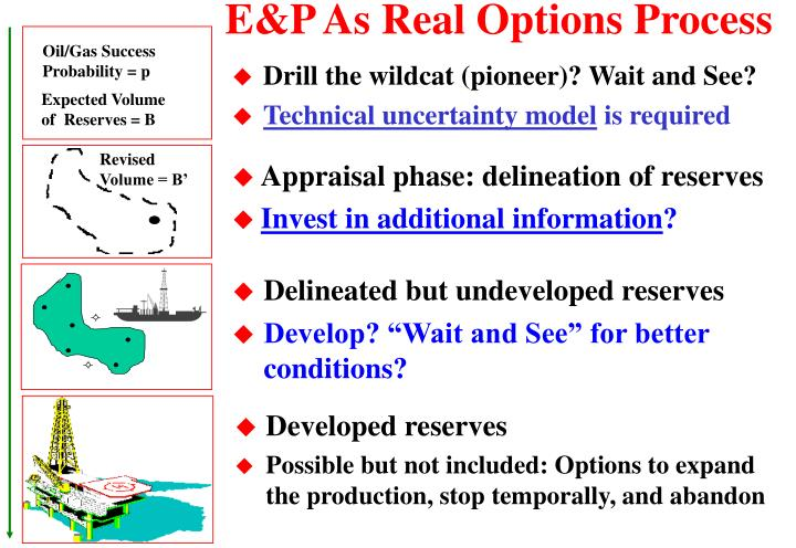 E p as real options process