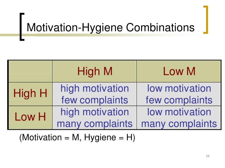 Motivation-Hygiene Combinations